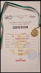 http://www.zedpix.ru/img/s15/15-1470821286_th.jpg